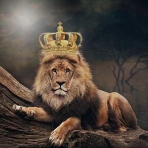 王冠を被ったライオン